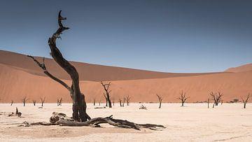 Deadvlei Namibia von t.a.m. postma
