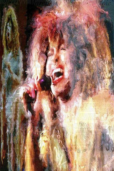 Tina Turner Pop Art Canvas van Leah Devora