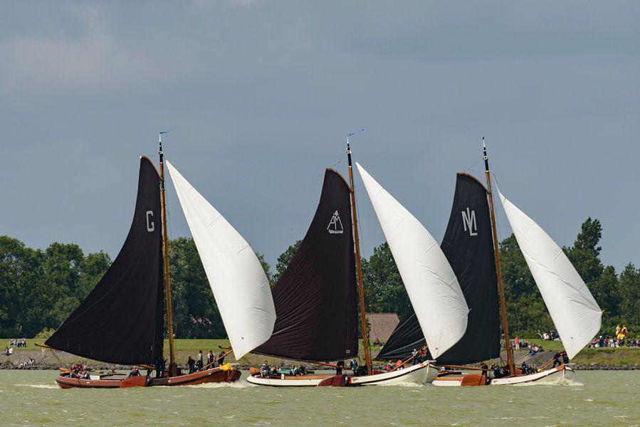 Skûtsje zeilboten op het IJsselmeer