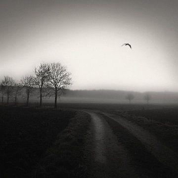 Country Lane von Lena Weisbek