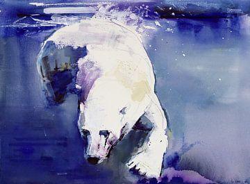 Unterwasser-Bär von Mark Adlington