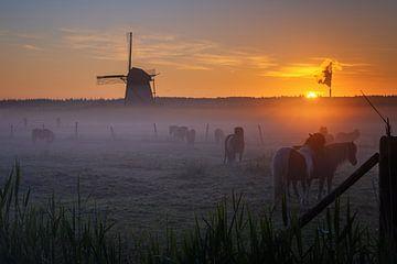 Misty Morning Lienden I van Sander Peters Fotografie