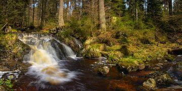 Wasserfall im Harz von Steffen Gierok