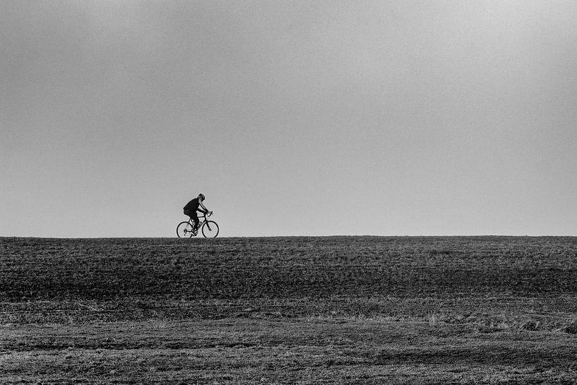 Eenzame fietser van Ton de Koning