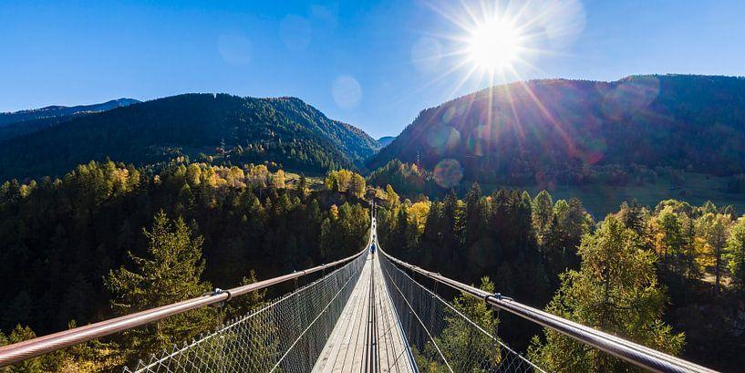 Hangbrug Gomsbrug in het Wallis in Zwitserland van Werner Dieterich