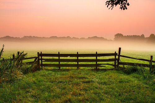 Mist achter het hek van