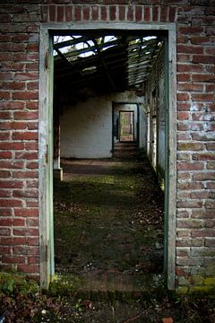 Blick durch ein verlassenes Gebäude von Suzanne Schoepe