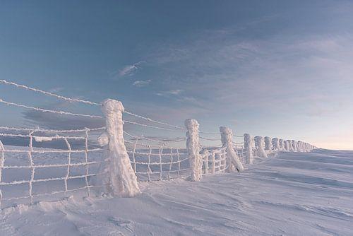 bevroren hek. in lapland Finland 2020