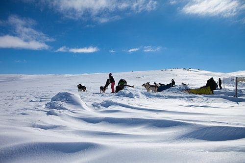 Nationaal park Hardangervidda van