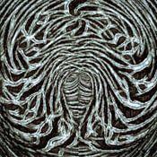 GOOR abstracten profielfoto