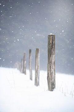 Holzpfosten im Schnee von