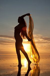 Artistiek naakt op de waddenzee bij zonsondergang