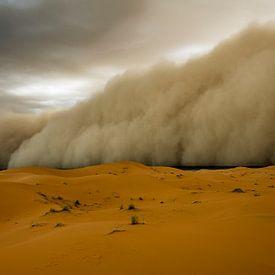 Zandstorm! van Peter Vruggink