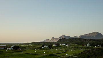 Vergezicht over Fredvang, Lofoten, Noorwegen van Floris Heuer