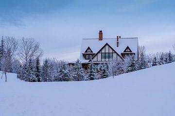 Winter Wonderland van Samantha Locadia Photography