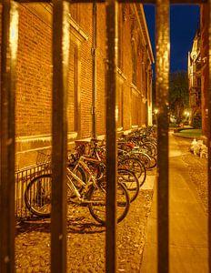 Studentenstad Cambridge, fietsen achter hek van Stefania van Lieshout