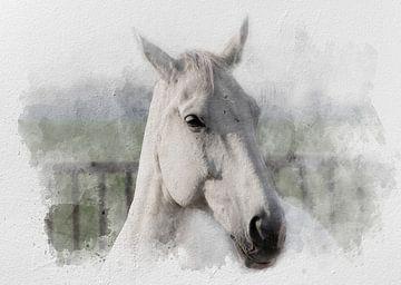 Le cheval blanc 02 sur Olaf Bruhn