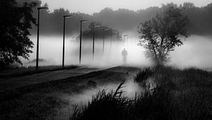 Mistige morgen van