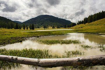 Oostenrijkse landschap van Remco de Zwijger