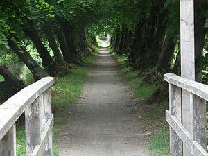 Natuurlijke tunnel