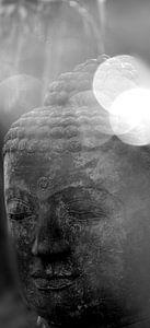 Kopf eines Buddhas in S/W van