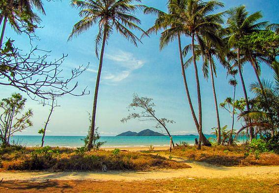 Tropisch strand van Queensland met zicht op Dunk Island, Australie