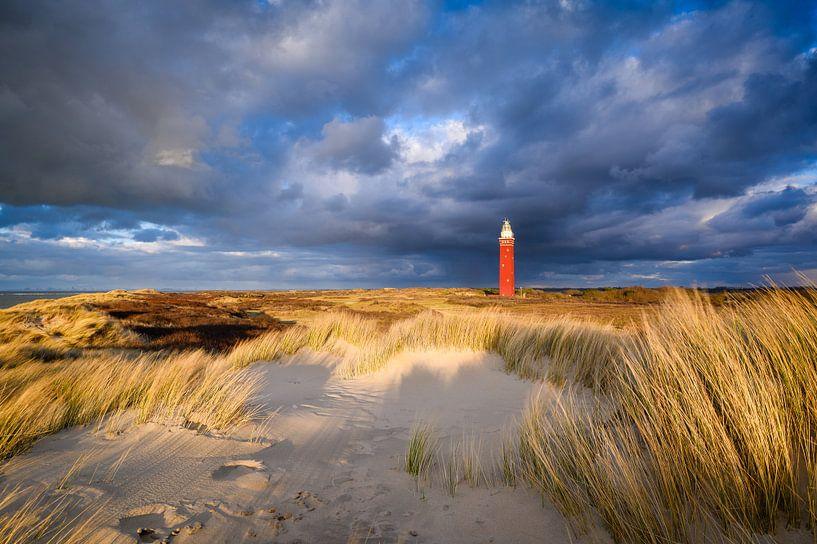 Leuchtturm in den Dünen von Ellen van den Doel