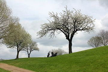 Voorjaar op de golfbaan van Rob Hendriks