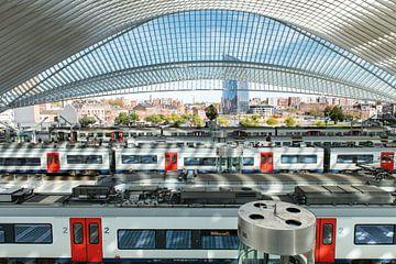 Treinen in station Luik-Guillemins. van Wim Stolwerk