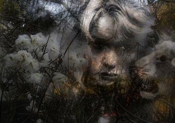 In de jungle - Uiterwaarden van Christine Nöhmeier