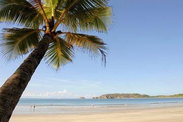Costa Rica sur René Schotanus
