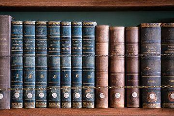 Bücherregal mit alten Büchern. von Roman Robroek