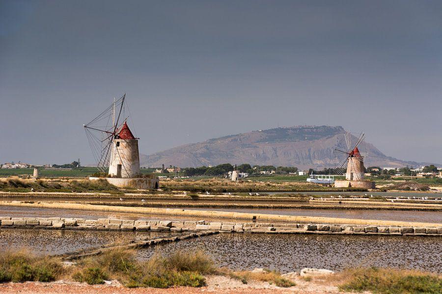 Molens bij zoutpannen van Adri Vollenhouw