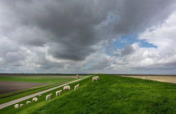 Waddendijk van Bo Scheeringa