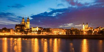 Maagdenburg met de kathedraal bij nacht van Werner Dieterich