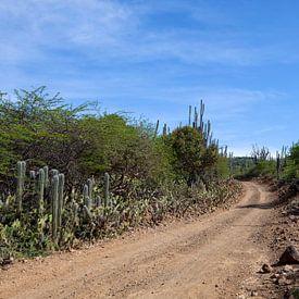 Bonaire landschap. van Vanessa Devolder