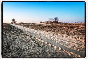 Trail of sand von Björn Massuger
