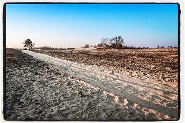 Trail of sand van Björn Massuger