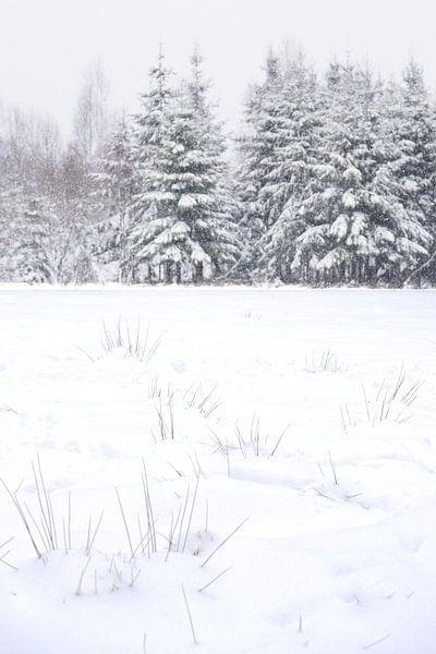 Winter sur Gonnie van de Schans