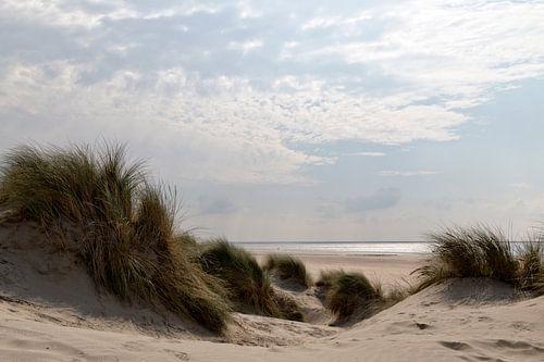 Duin, strand en zee II