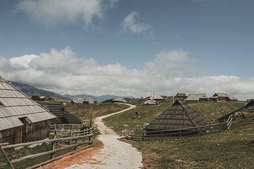 Velika Planina dorp van Paulien van der Werf