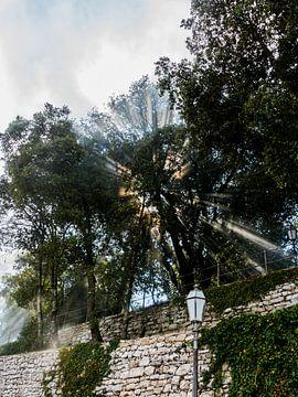 Zonnestraaltjes op Sicilië 1 van de buurtfotograaf Leontien