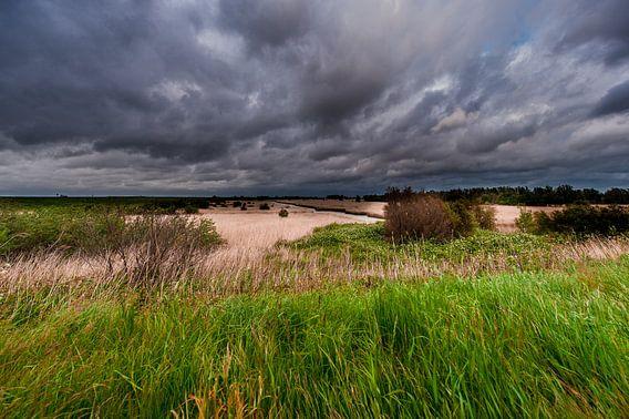 A Thunderstorm over a Landscape van Brian Morgan