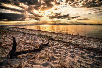 Strandabschnitt von Sebastian Witt