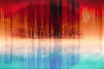 Abstracte reflectie van een groep bomen van Nannie van der Wal