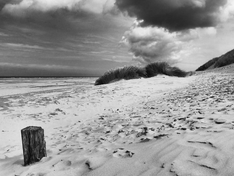Strand en duinen van Terschelling van Jessica Berendsen