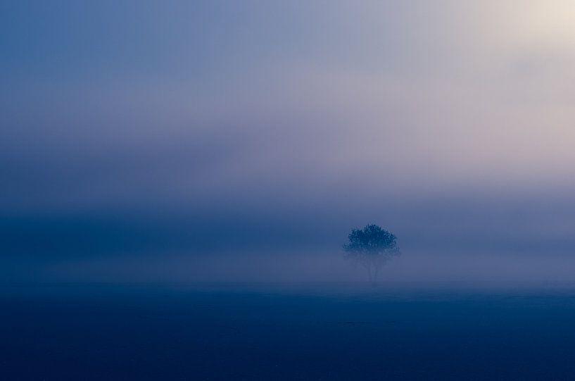 Eenzaam van Karen Havenaar