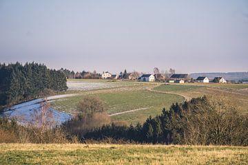 Heuvelachtige Ardennen von Nynke Nicolai