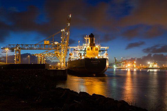 Ships in the night van Paul Kampman