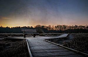 Zitbank op houten vlonder voetpad van Wim Schuurmans